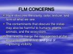 flm concerns1