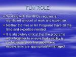 flm role3