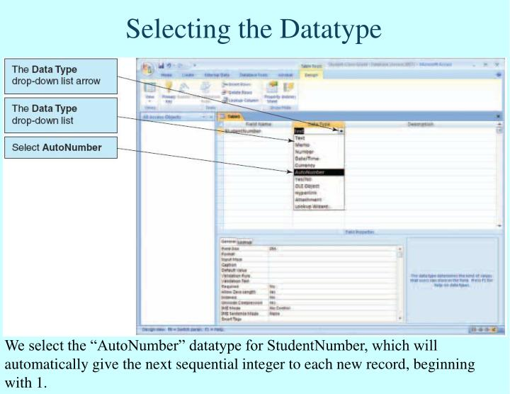 Selecting the Datatype