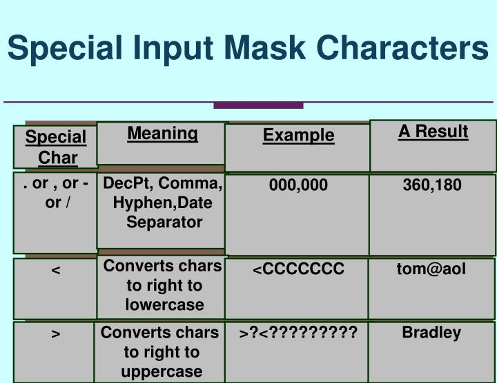 Special Input Mask Characters