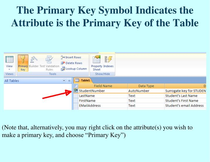 The Primary Key Symbol Indicates the Attribute is the Primary Key of the Table