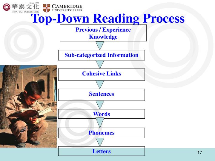 Top-Down Reading Process
