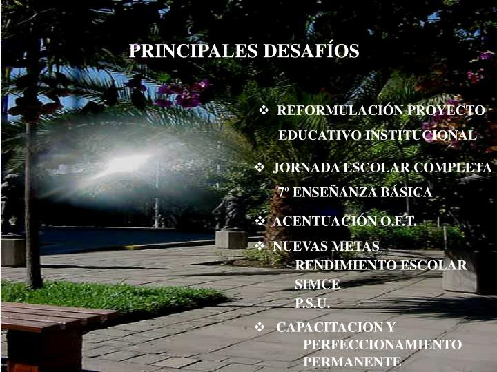 PRINCIPALES DESAFÍOS