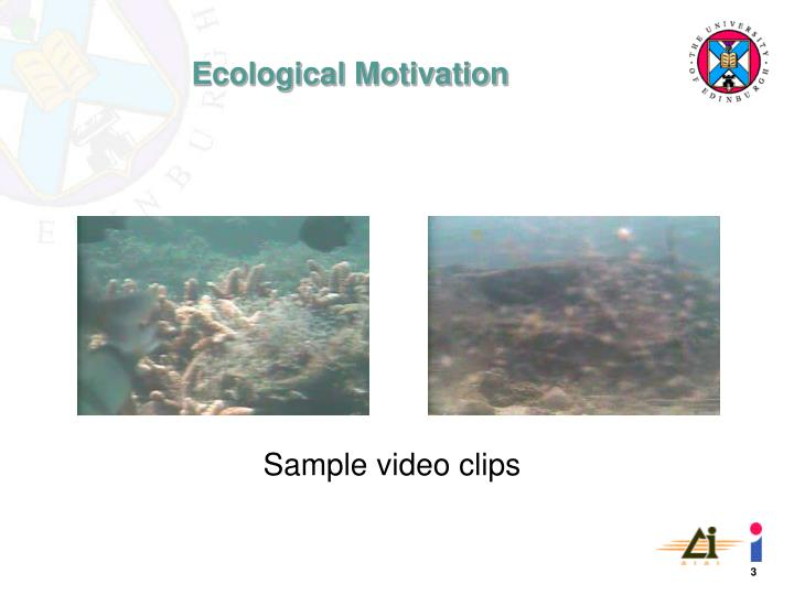 Sample video clips