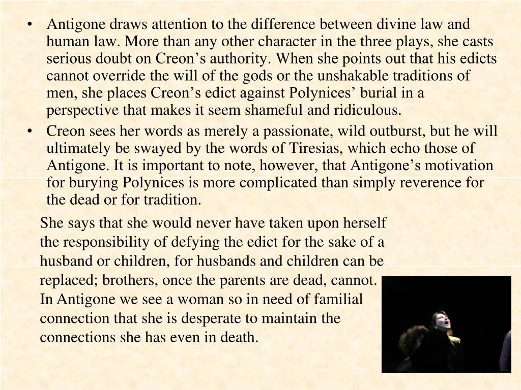 Antigone draws attention to the difference between divine law and human law. More than any other character in the three plays, she casts serious doubt on Creon's authority. When she points out that his edicts cannot override the will of the gods or the unshakable traditions of men, she places Creon's edict against Polynices' burial in a perspective that makes it seem shameful and ridiculous.