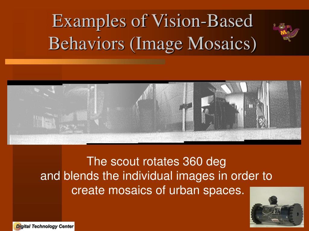 Examples of Vision-Based Behaviors (Image Mosaics)