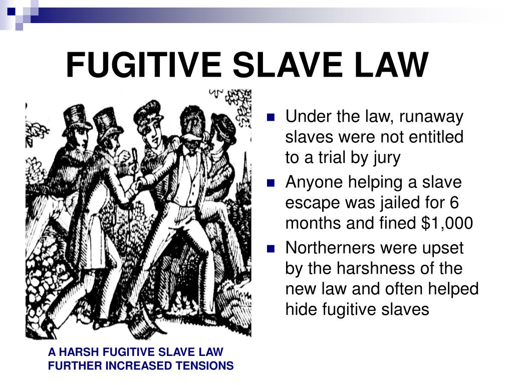 essays on fugitive slave act Critical essays the fugitive slave act  the first fugitive slave act, passed by  congress in 1793, stipulated that slave owners or their agents could arrest and.