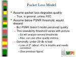 packet loss model