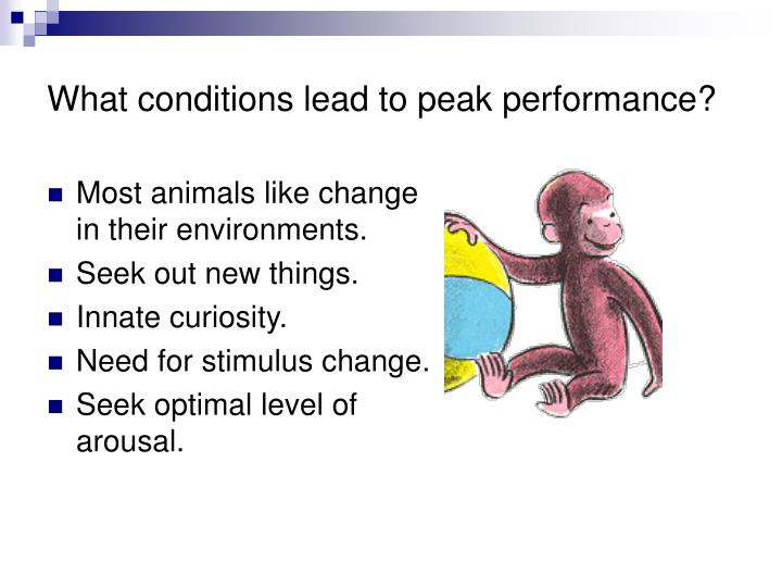 What conditions lead to peak performance