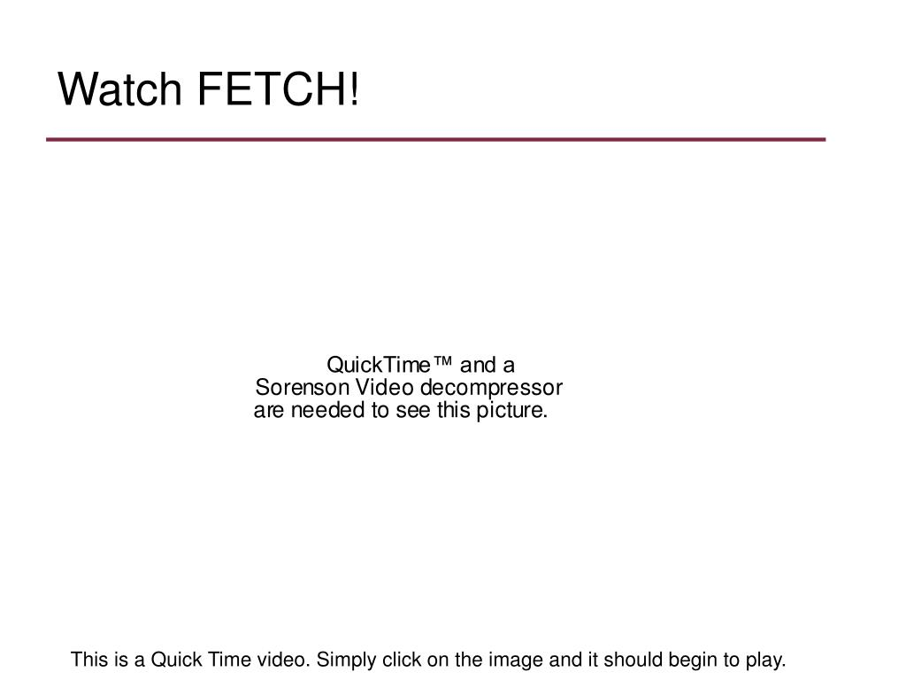 Watch FETCH!