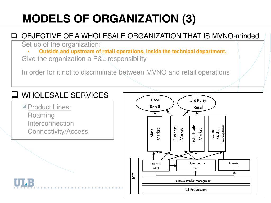 MODELS OF ORGANIZATION (3)