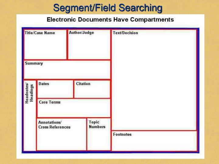 Segment/Field Searching