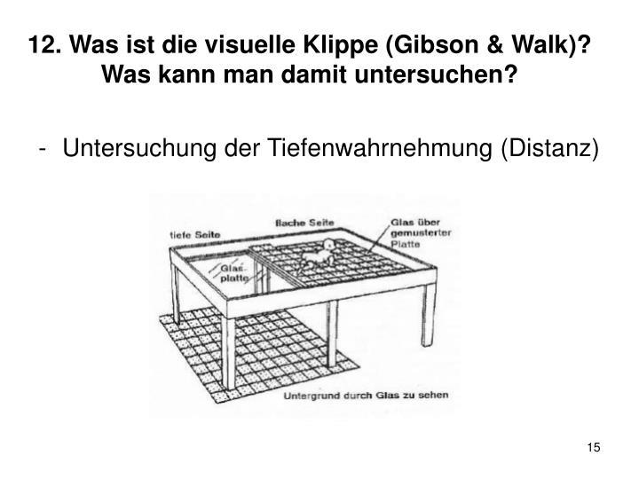 12. Was ist die visuelle Klippe (Gibson & Walk)? Was kann man damit untersuchen?