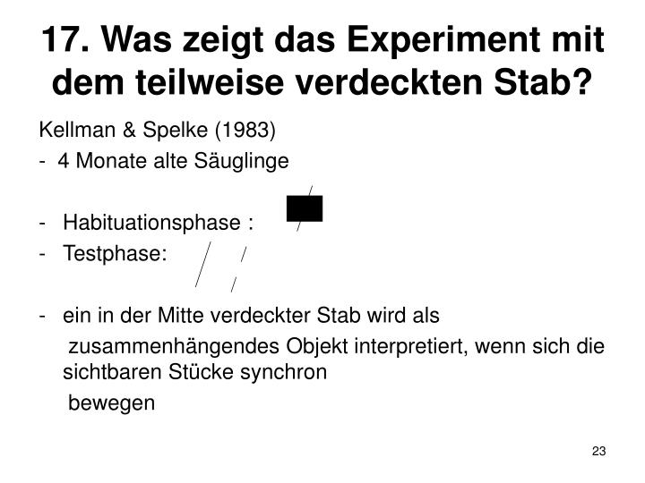 17. Was zeigt das Experiment mit dem teilweise verdeckten Stab?