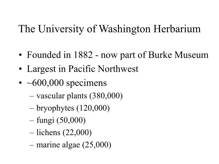 The University of Washington Herbarium