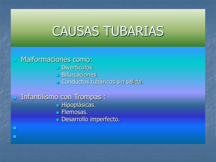 CAUSAS TUBARIAS