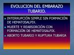 evolucion del embarazo tubario
