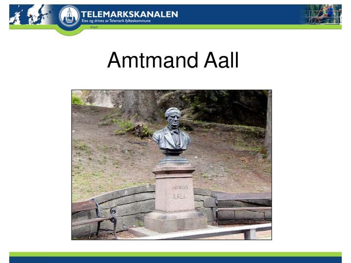 Amtmand Aall
