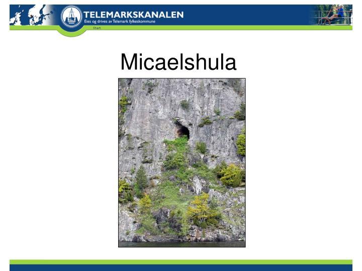 Micaelshula