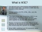 what is w3c