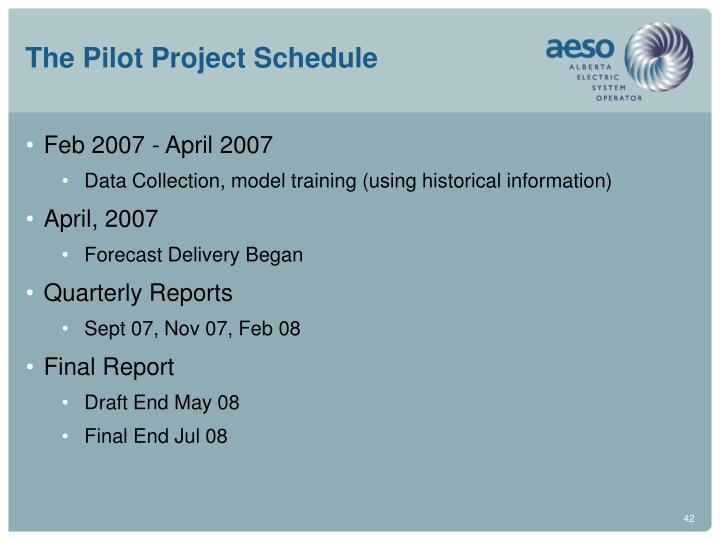 The Pilot Project Schedule