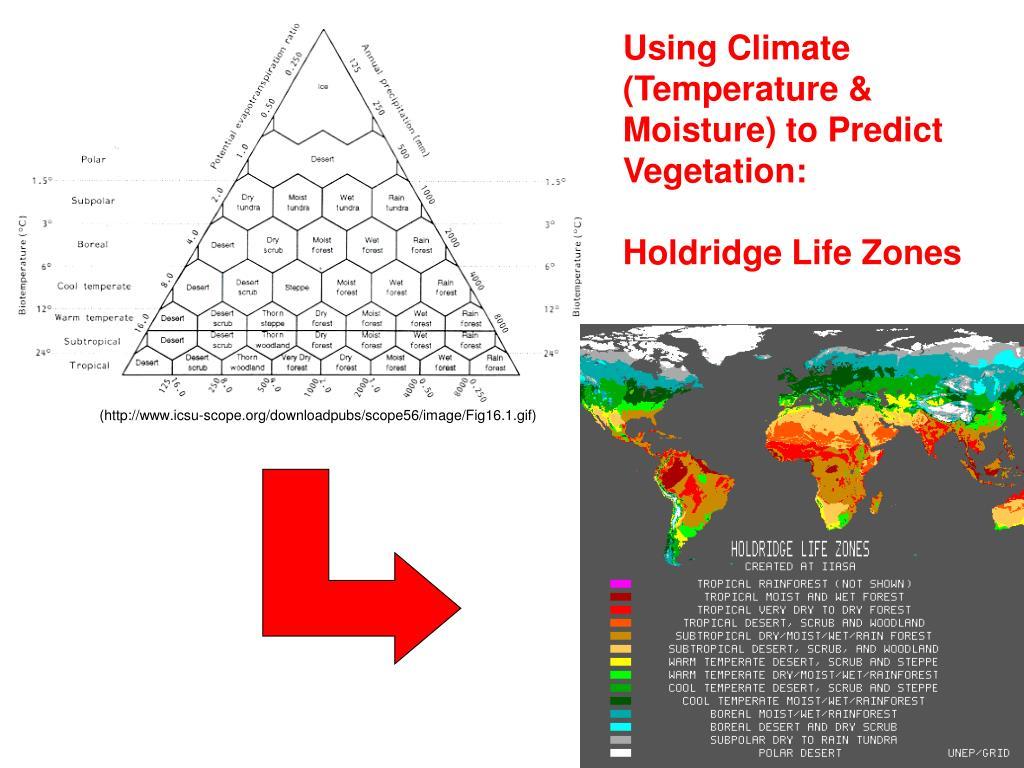 Using Climate (Temperature & Moisture) to Predict Vegetation:
