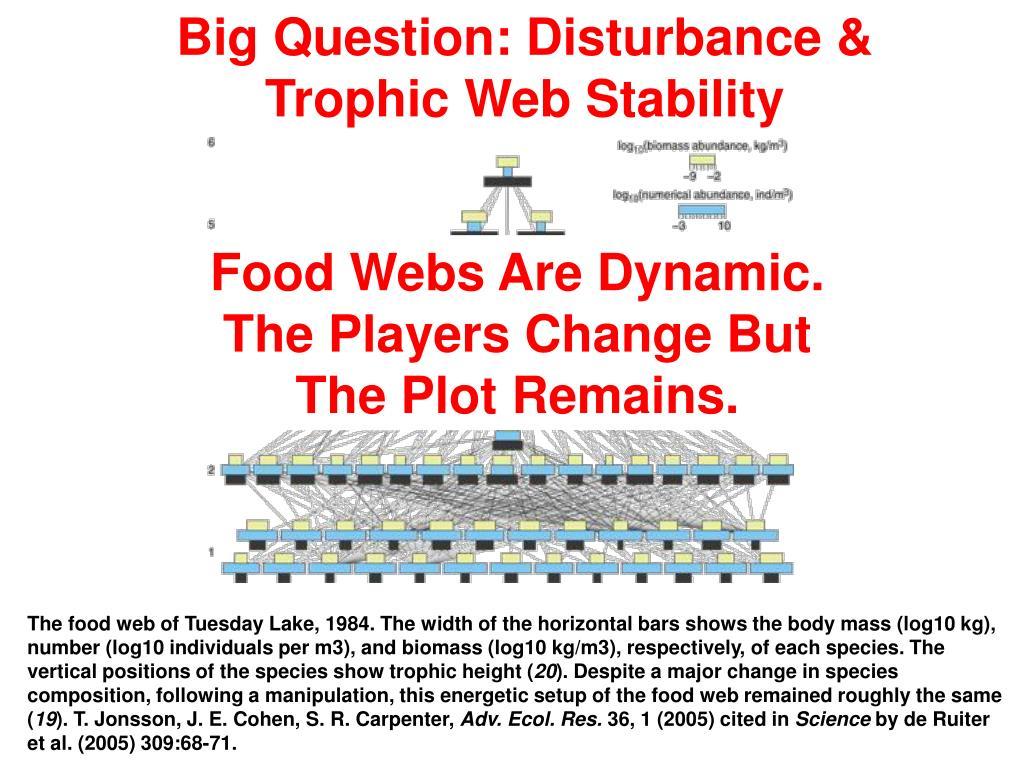Big Question: Disturbance & Trophic Web Stability