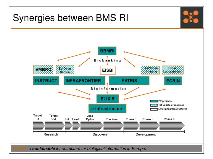 Synergies between BMS RI