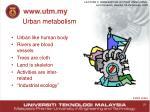 urban metabolism