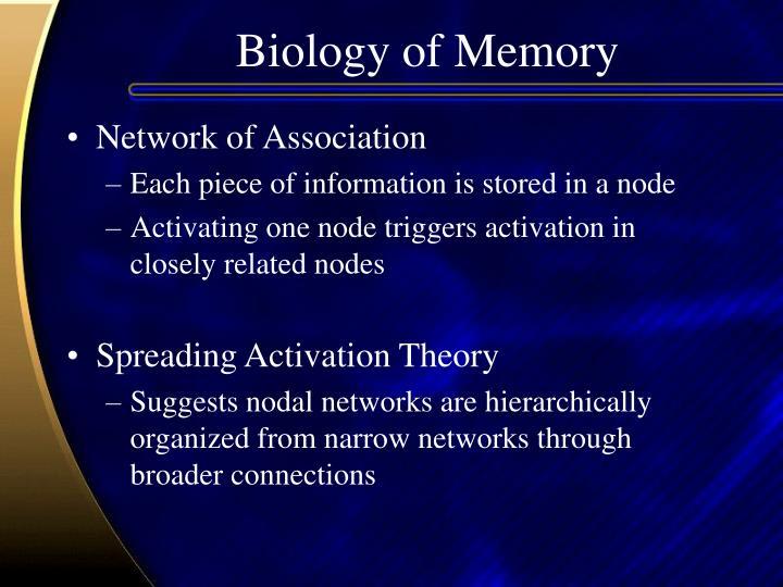 Biology of Memory