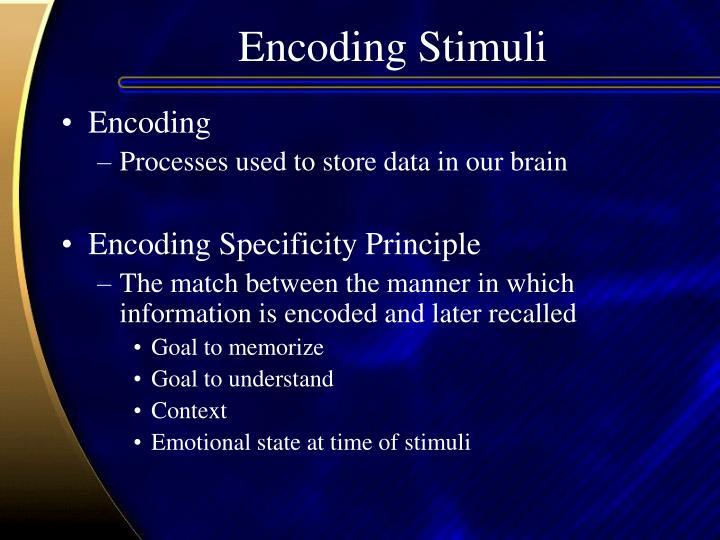 Encoding Stimuli