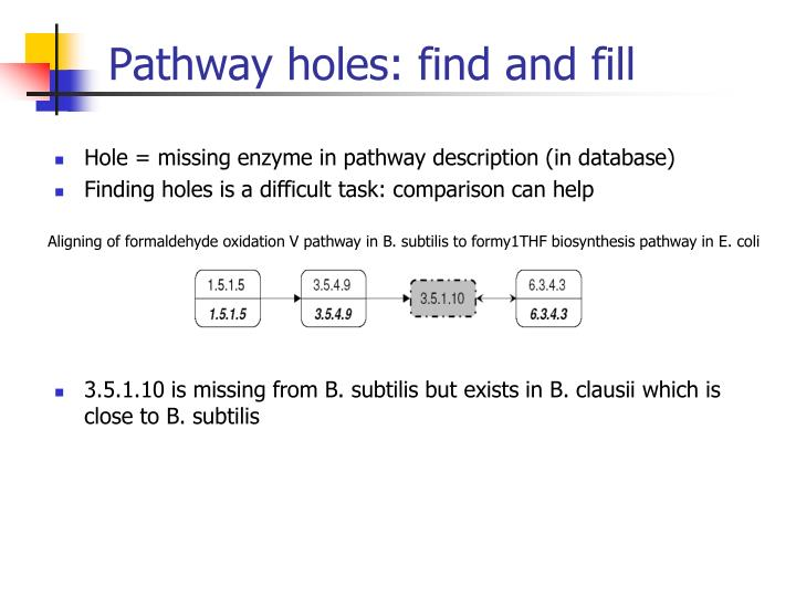 Pathway holes: find and fill