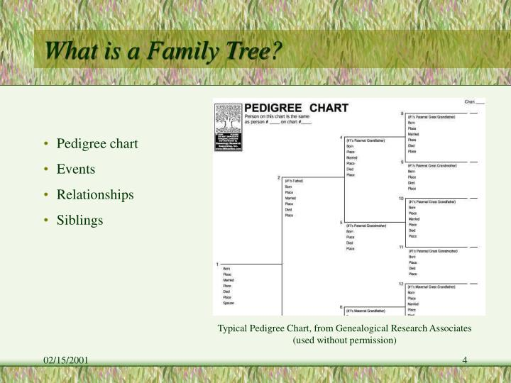What is a Family Tree?