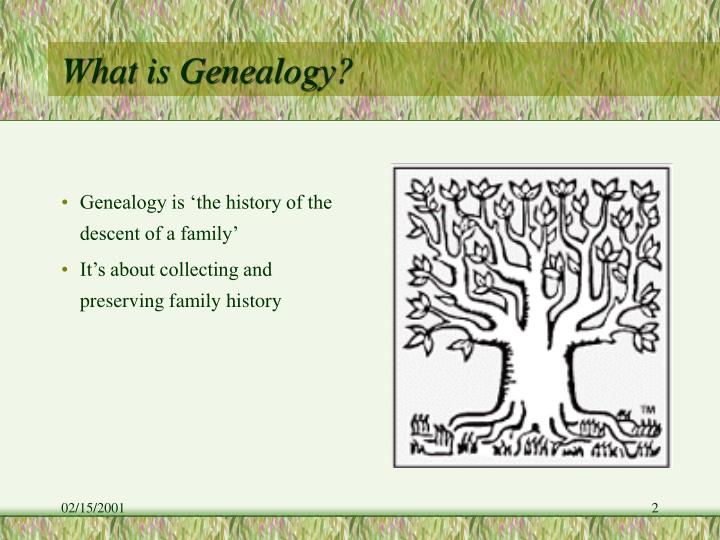 What is Genealogy?