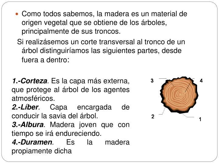 Como todos sabemos, la madera es un material de origen vegetal que se obtiene de los árboles, principalmente de sus troncos.