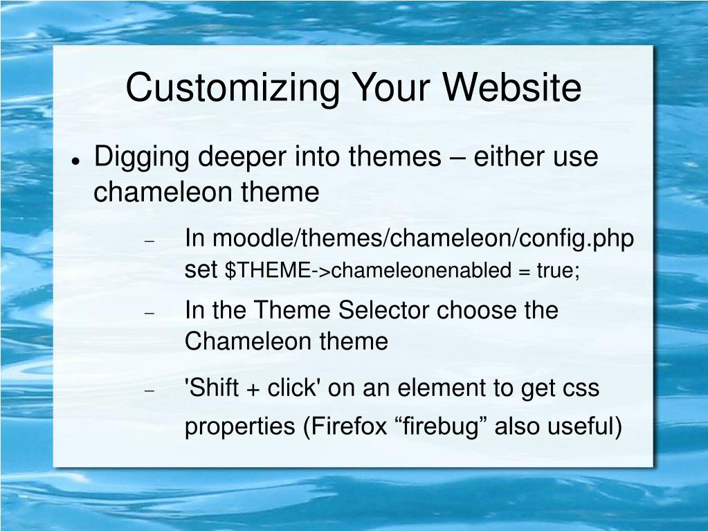 Customizing Your Website
