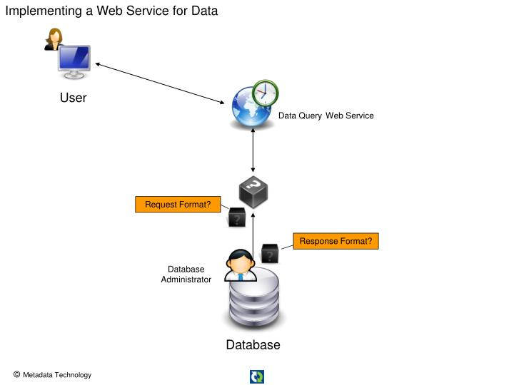 Implementing a Web Service for Data