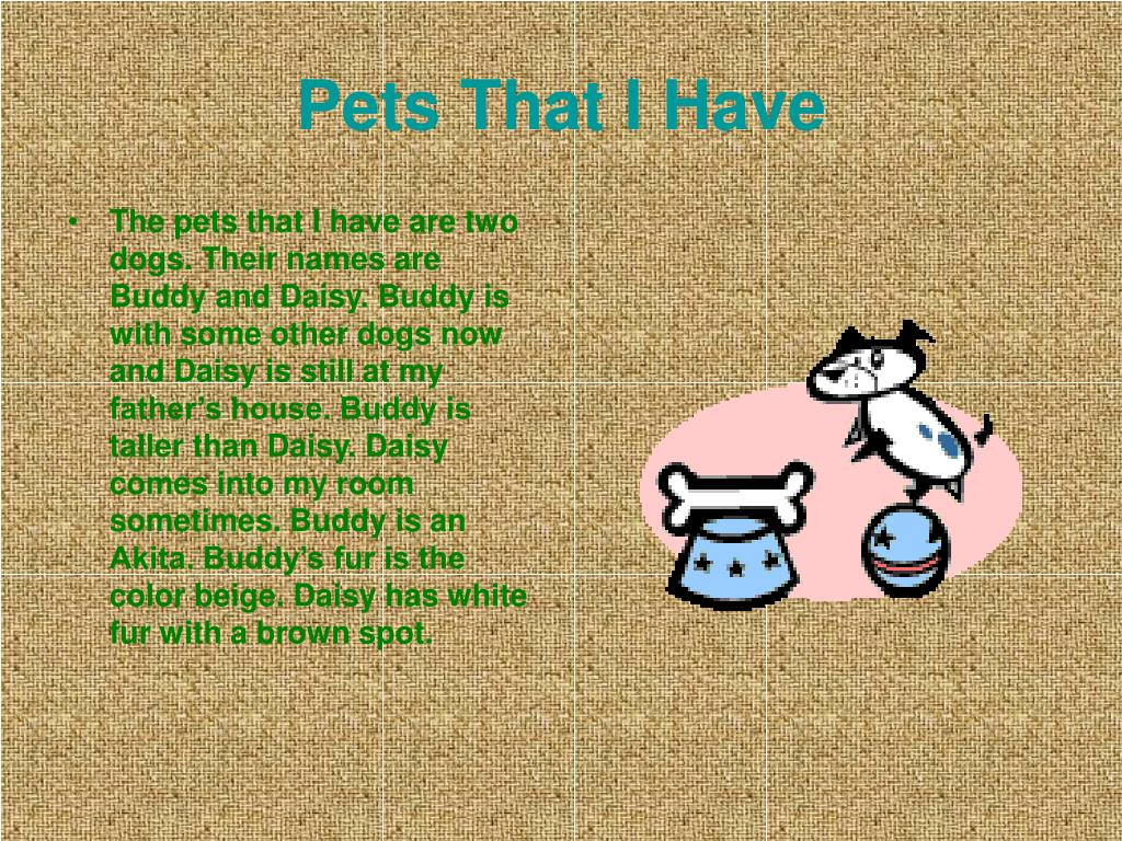 Pets That I Have