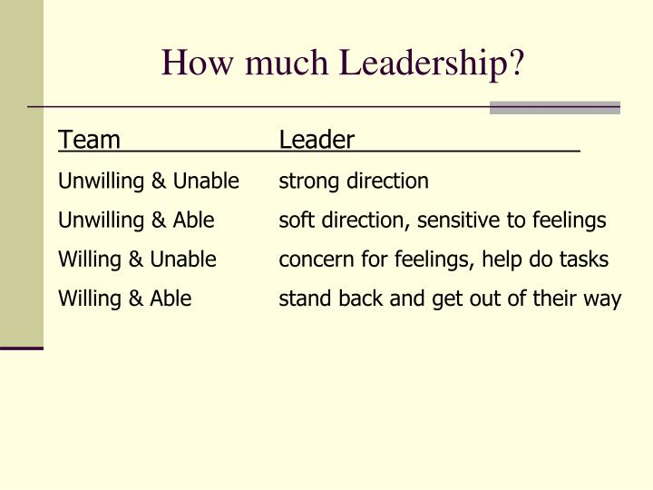 How much Leadership?