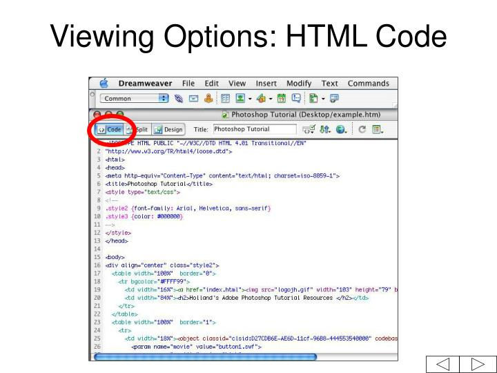 Viewing Options: HTML Code