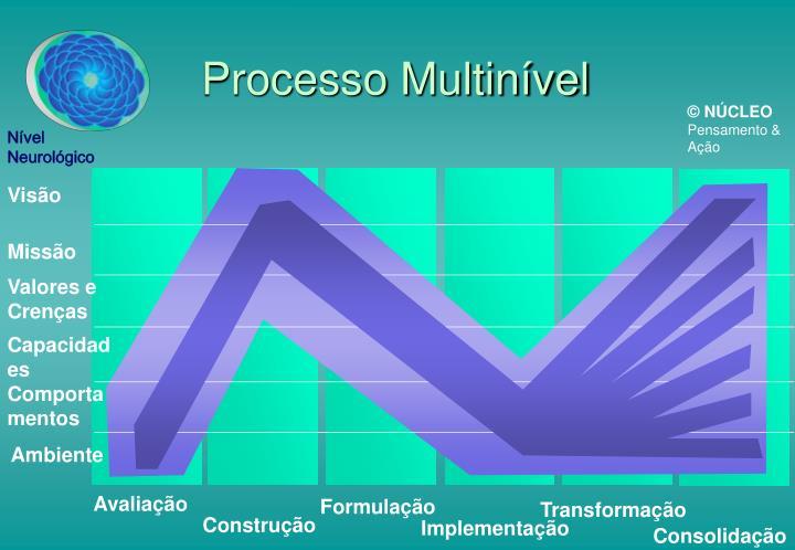 Processo Multinível