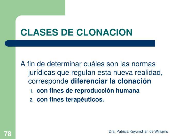CLASES DE CLONACION