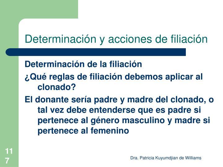 Determinación y acciones de filiación