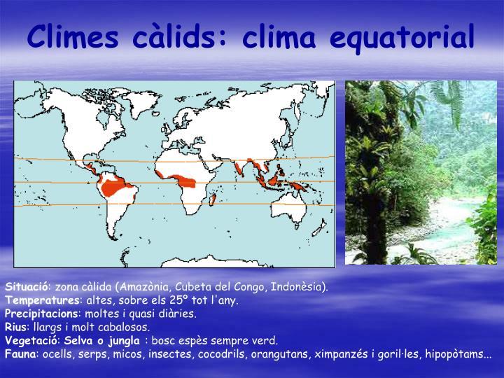 Climes càlids: clima equatorial