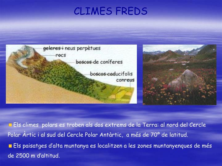 CLIMES FREDS