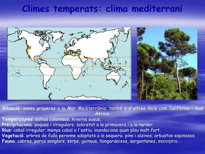 Climes temperats: clima mediterrani