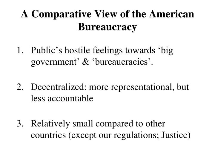 A comparative view of the american bureaucracy