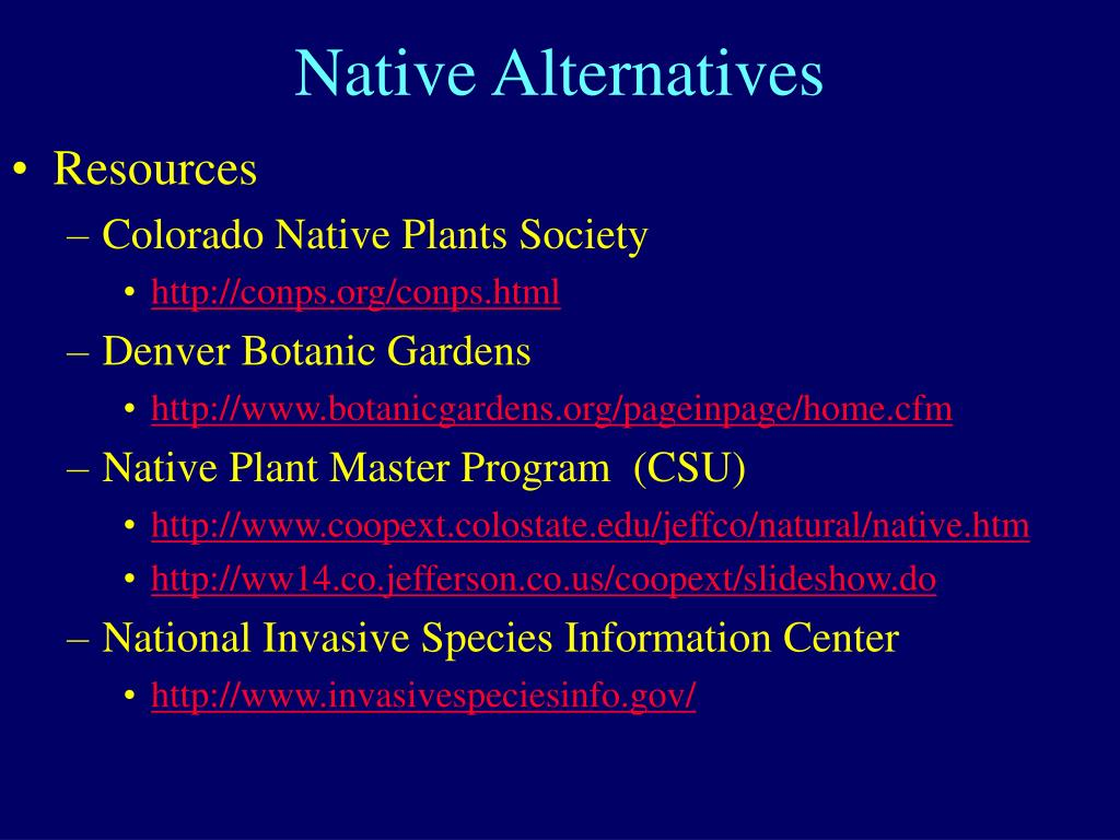 Native Alternatives