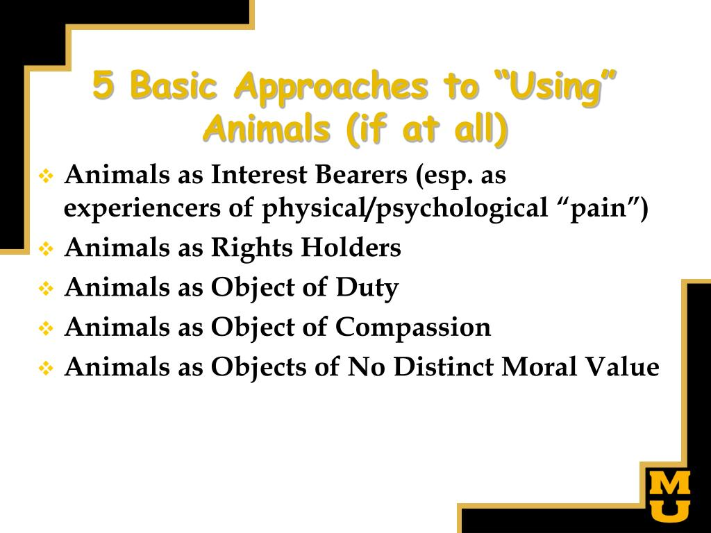 "5 Basic Approaches to ""Using"" Animals (if at all)"