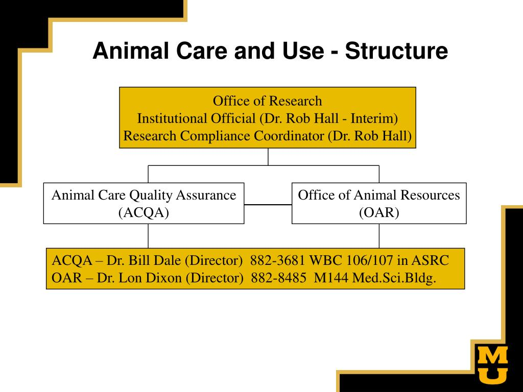 Animal Care and Use - Structure
